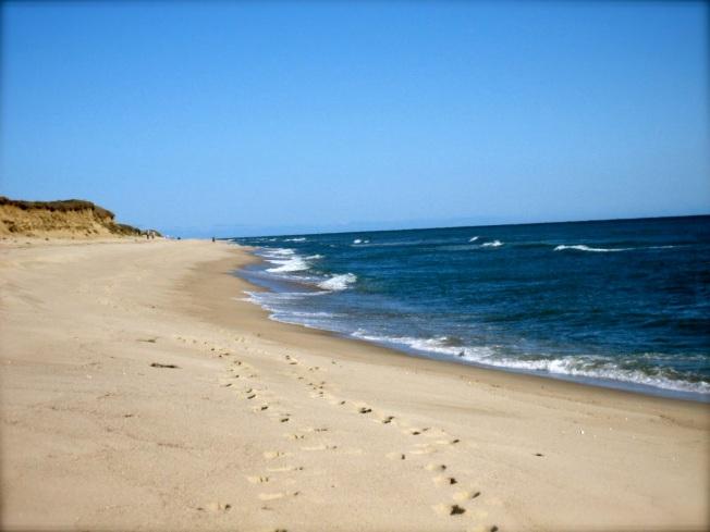 sunny-day-beach